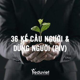 36 kế cầu người & dùng người (PIV)
