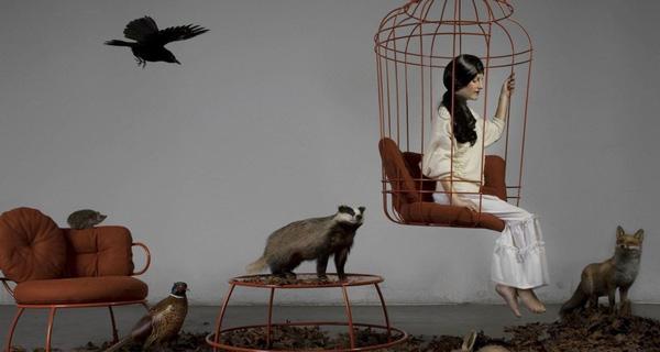 Nỗ lực cống hiến hay chọn sống cuộc đời nhàn hạ như một chú chim trong lồng?